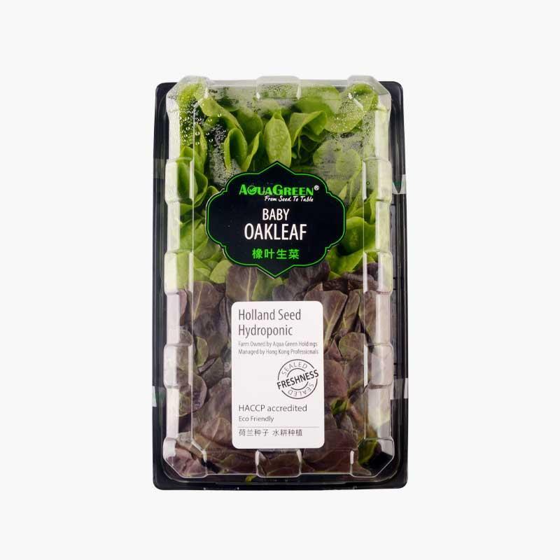 Aqua Green Baby Oakleaf Lettuce 200g