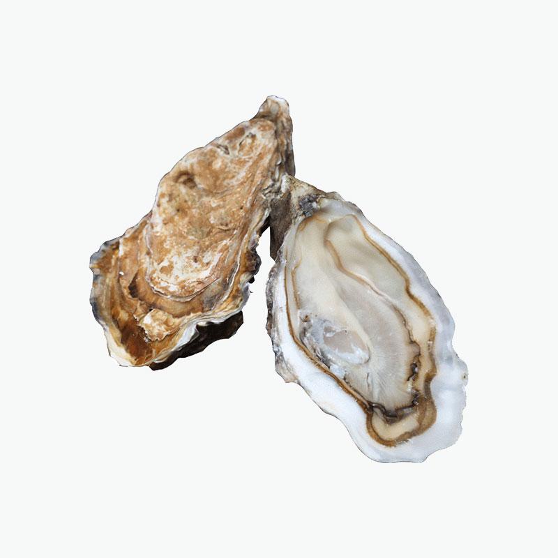 Gillardeau N.1 Oysters 24 Pcs