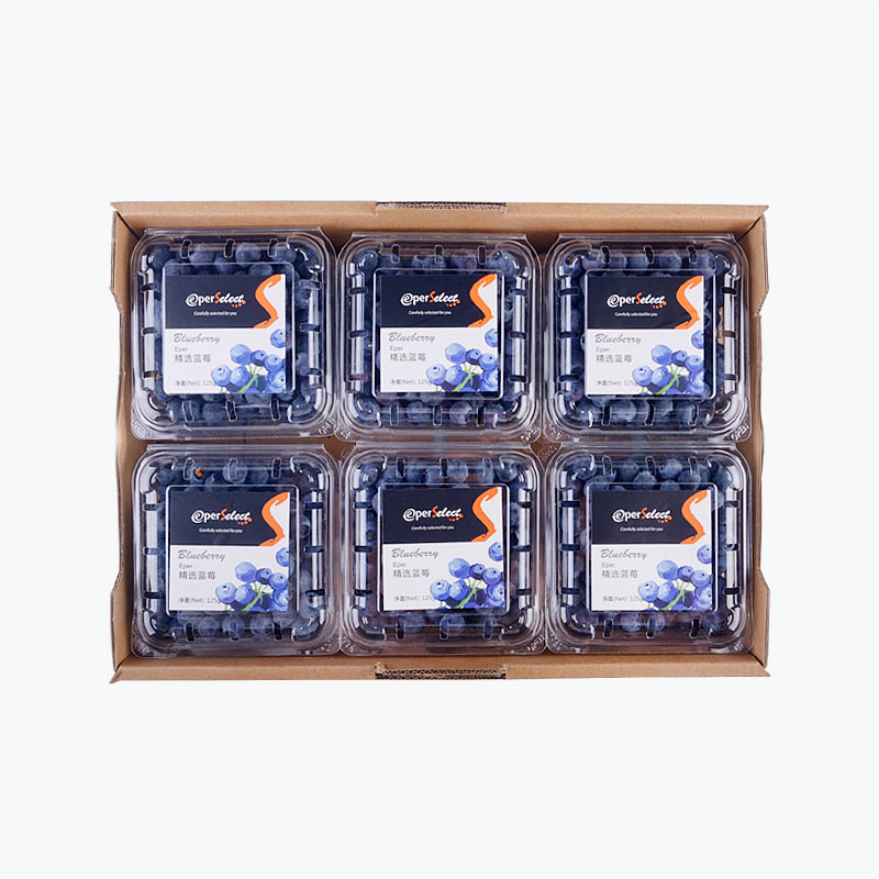 EperSelect Blueberries 125g*12
