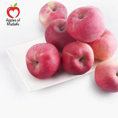 Organic Fuji Apple of Madaifu 10KG