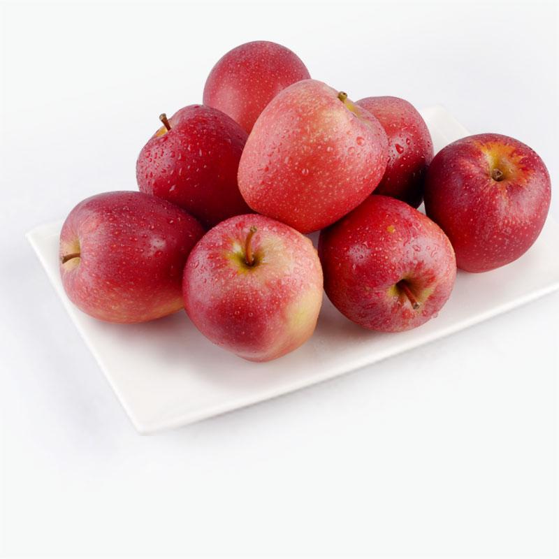 Queen Rose Apples x8 1.4kg~1.5kg