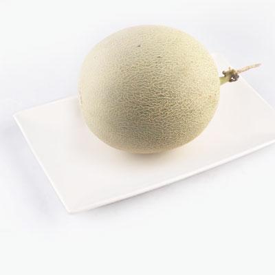 Cantaloupe Melon x1   1.6kg-1.8kg