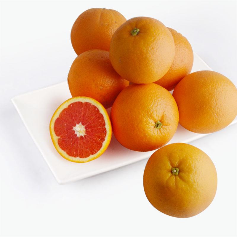Blood Orange 8pcs 1.5kg~1.6kg