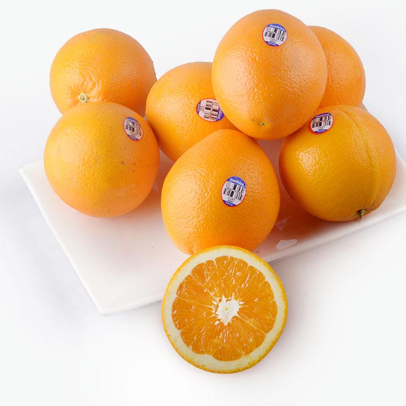 Australian Navel Oranges x8 1.6~1.7kg
