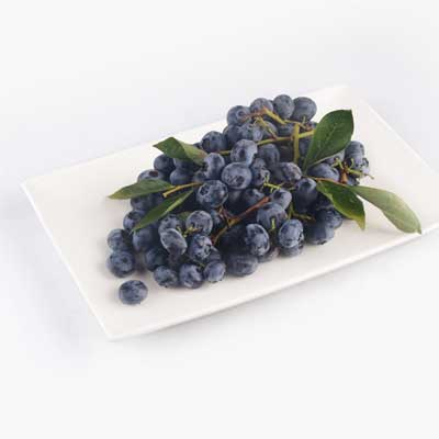 Blueberries on the Vine 250g