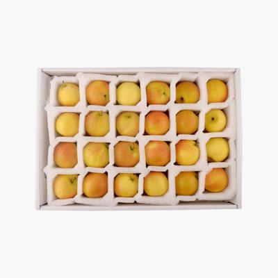 Organic Nanguo Pear x24 Gift Box