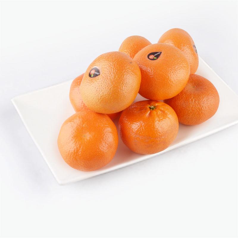Moroccan Sweet Tangerines x8 0.9-1kg