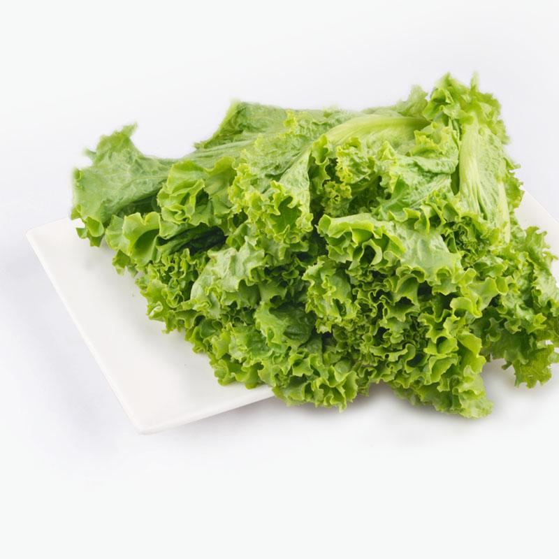 Organic Green Lettuce 250g