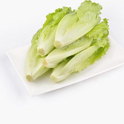 Organic Italian Lettuce 250g