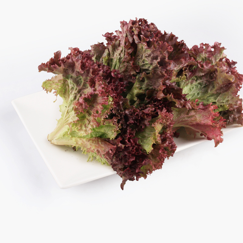 Organic Loose Red Leaf Lettuce 250g
