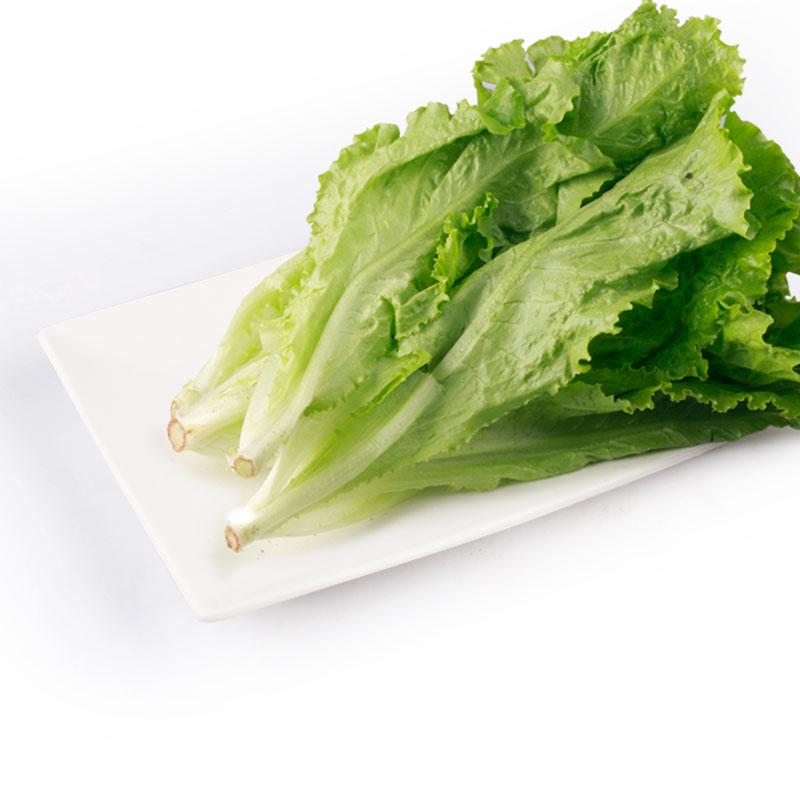 Organic Lettuce 250g