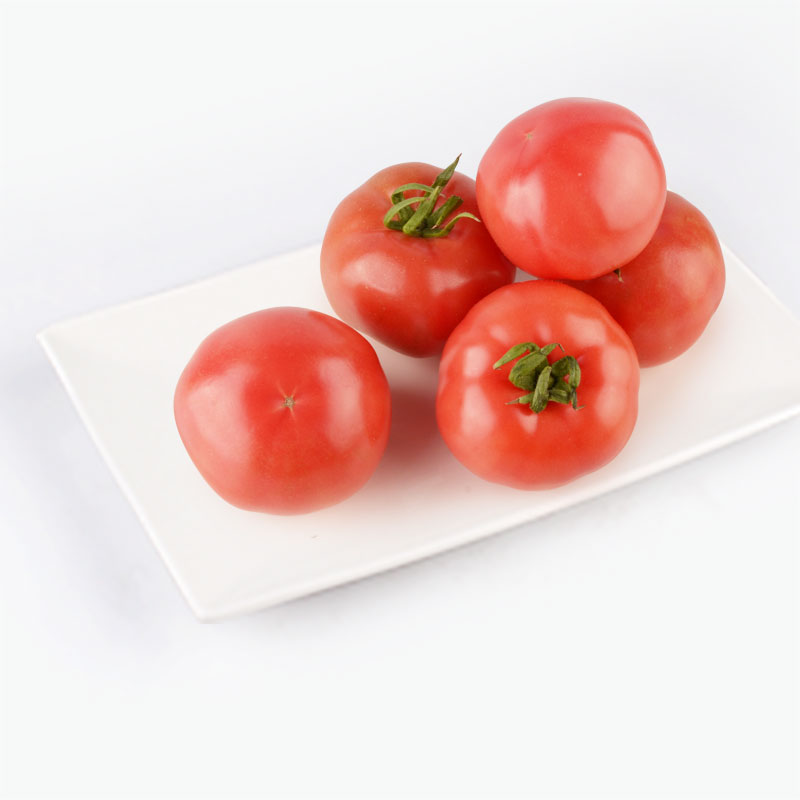 EperSelect Shandong Tomatoes 450-500g