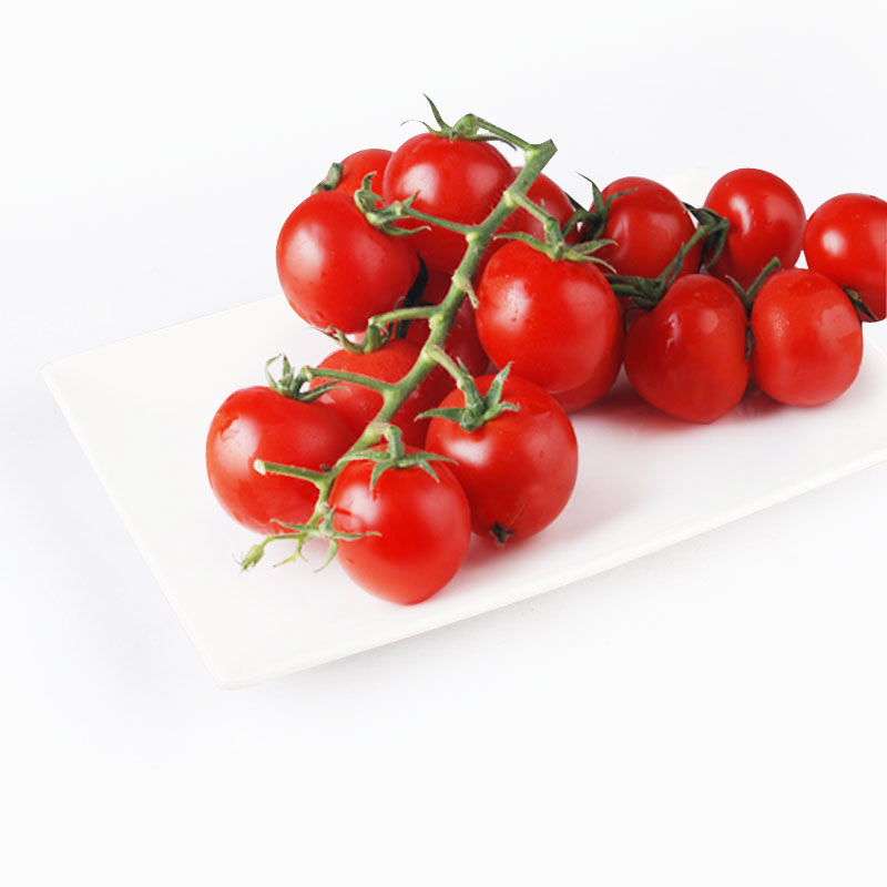 Tomatoes on the Vine 500g