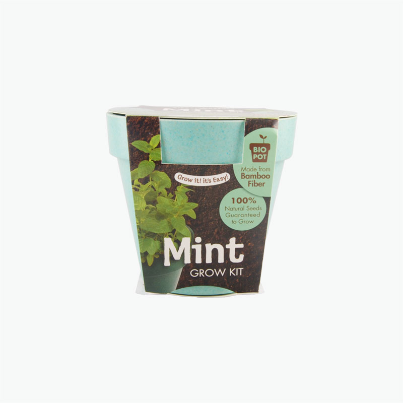 Paris Garden Mint Bio Pots Collection