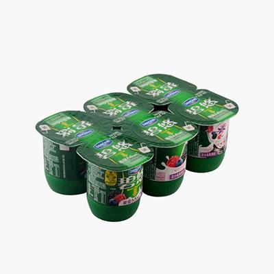 Danone Mixed Berries Yogurt 115g×6