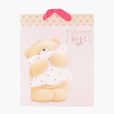 Hallmark Bear Gift Bag 197mmx246mm