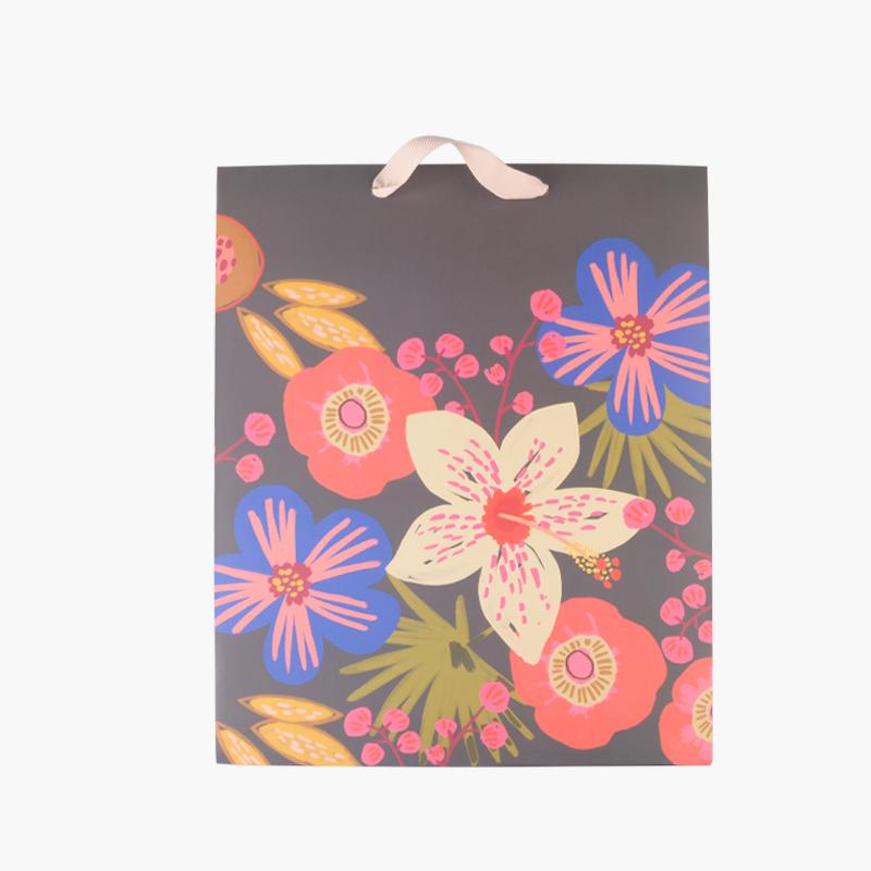 Hallmark Decorative Gift Bag 266mmx330mm