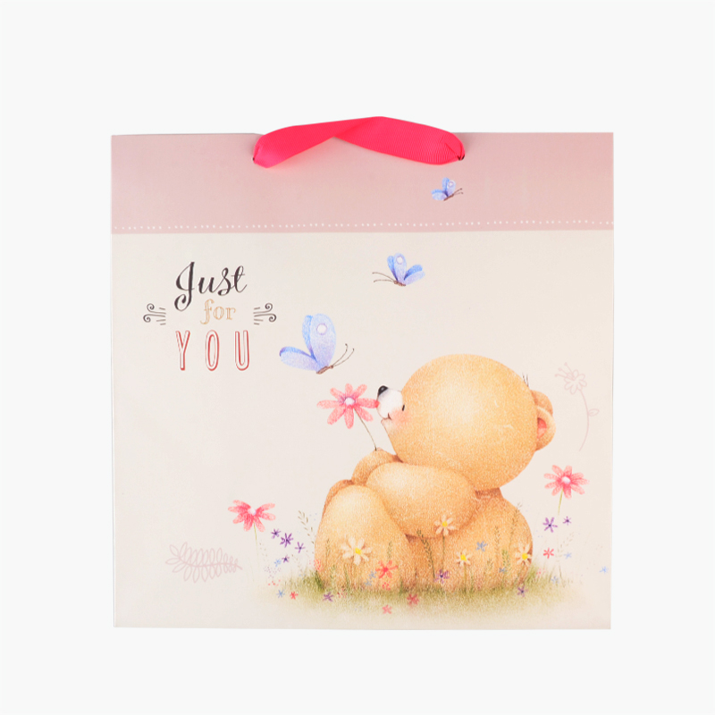 Hallmark Bear Gift Bag 266mmx266mm